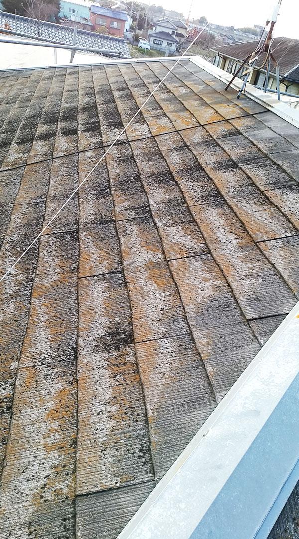 施工前屋根2