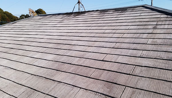 洗浄後屋根1